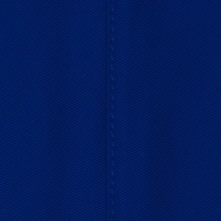 Comfy Royal Blue Fabric