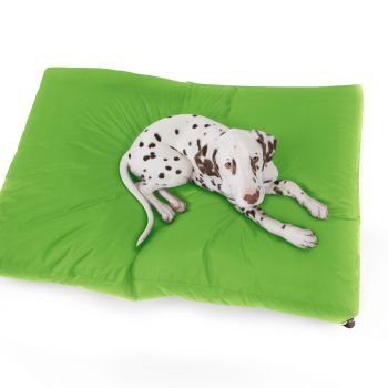 Lime Green Large Trend Pet Bed