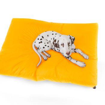 Trend Pet Bed