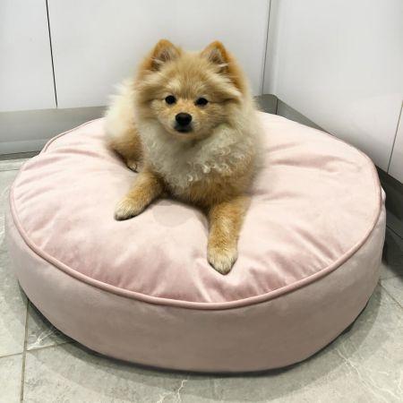Lunar round velvet pet bed