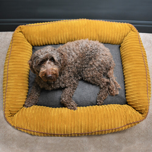 Bolster Dog Bed in Teal Jumbo Cord