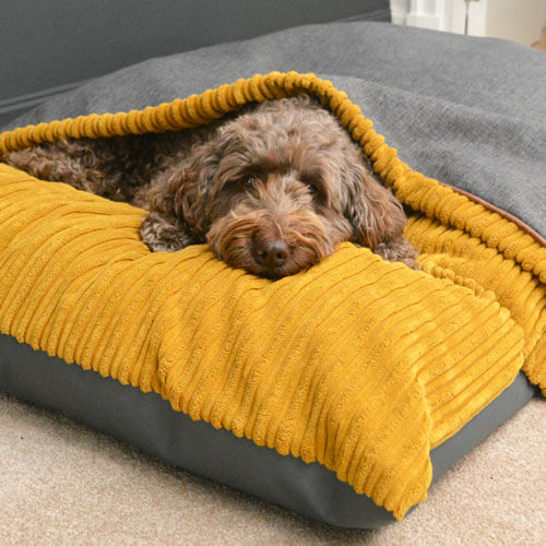 Burrower dog bed