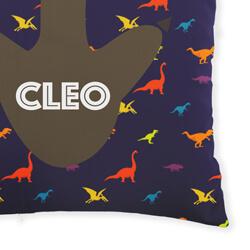 Dinosaur Cushion Close Up