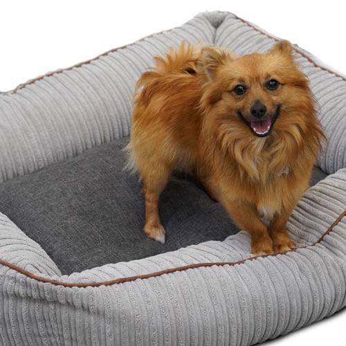 Jumbo Cord Bolster Dog Bed medium