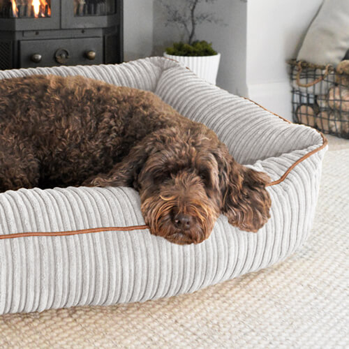 Bolster Dog Bed in Platinum Grey Jumbo Cord