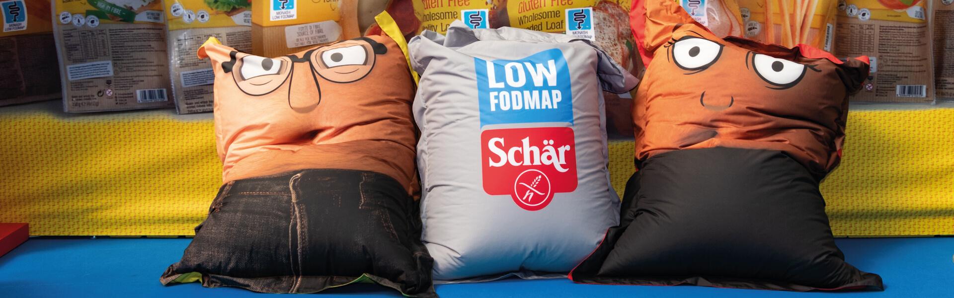 Dr Schar Bean Bags