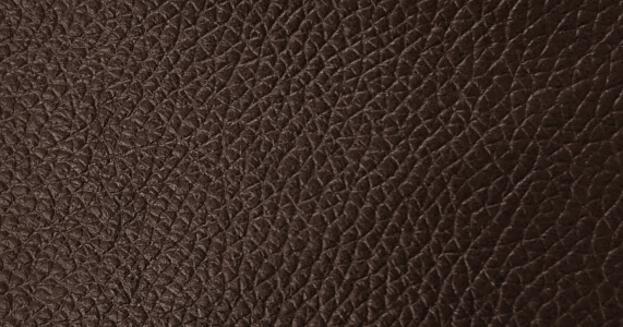Real Leather Fabric Swatch