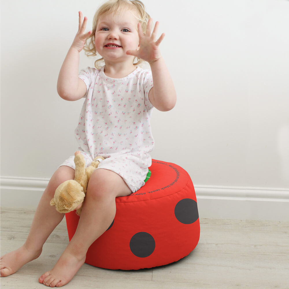 Ladybird - Animal Bean Bag Made in the UK