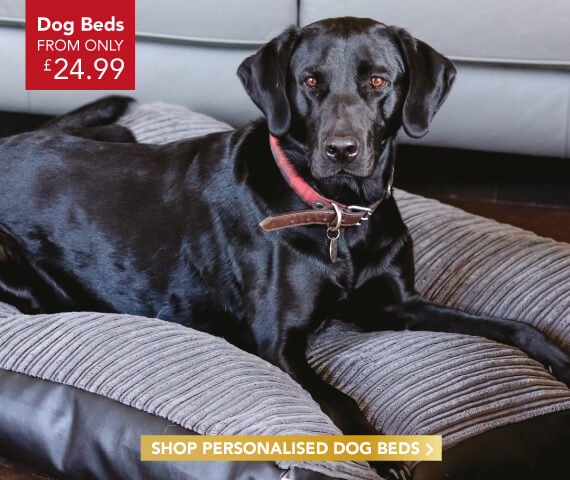 Personalised Dog Beds