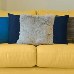 Velvet cushion on sofa